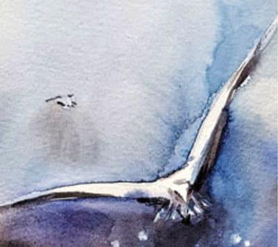 oiseau-300×266
